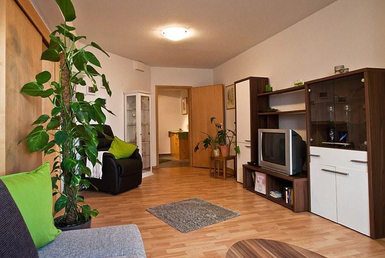 Cách bài trí cây xanh làm đẹp căn nhà